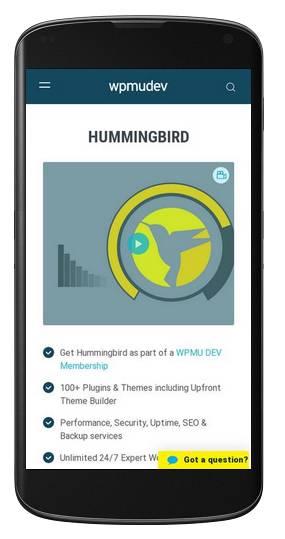 hummingbird-responsive